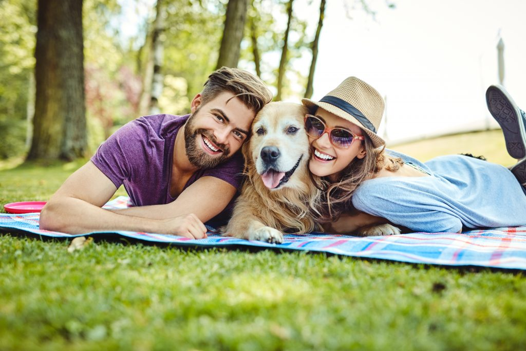 Dog Friendly Parks in Edmonton-Highland Moving and Storage