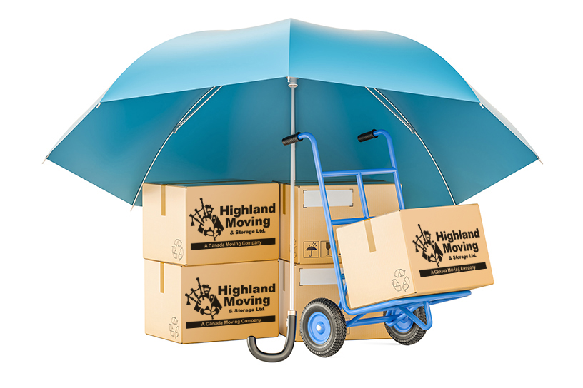 Liability of Movers and Consumers